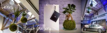 Lexus – Hauch Gallery