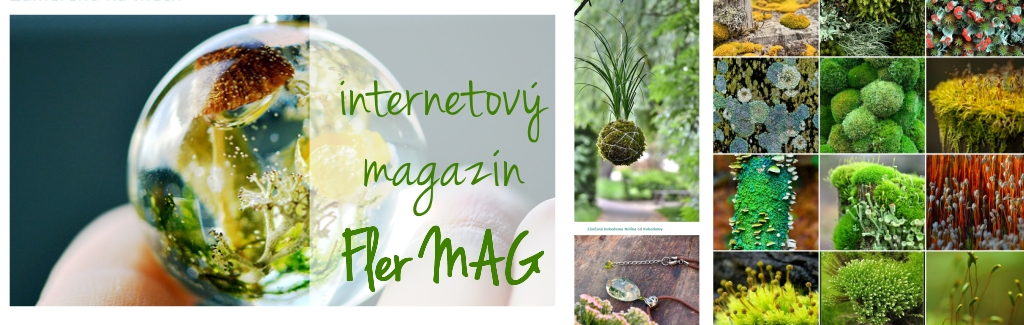 Internetový magazín Fler MAG