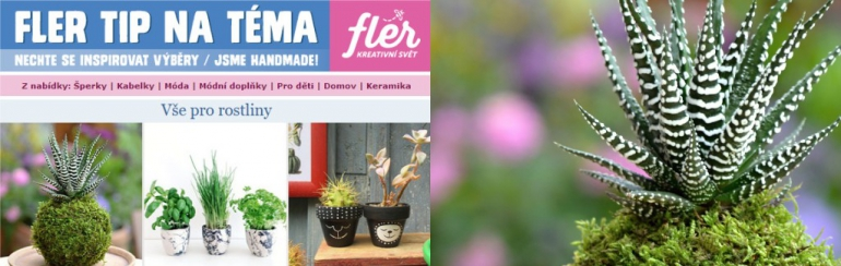 """Fler newsletter – Tip na téma """"Vše pro rostliny"""""""