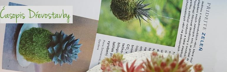 Časopis Dřevostavby