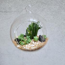 skleněné aerárium, 10 cm